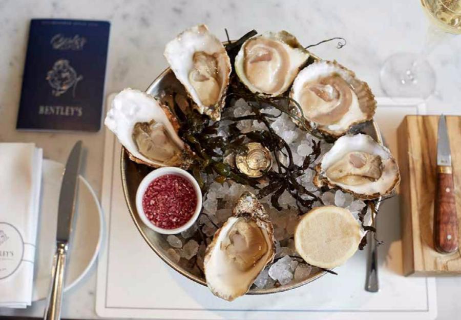 Bentleys London Oyster Masterclass GourmetXperience