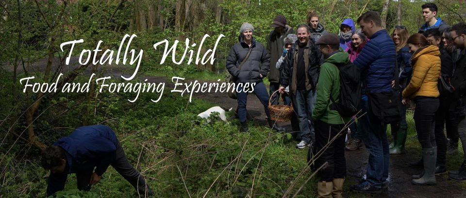 Totally Wild UK Group Foraging GourmetXperience